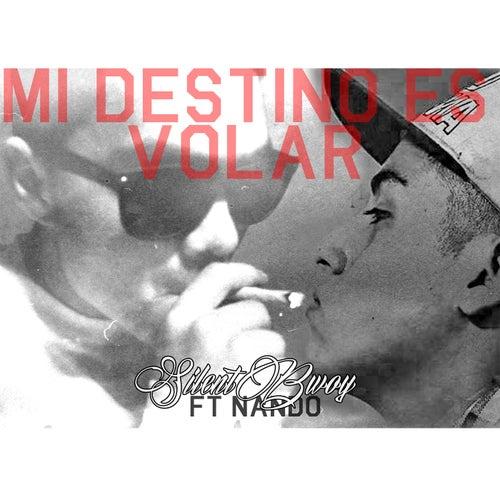 Mi Destino Es Volar by DJ Payback Garcia