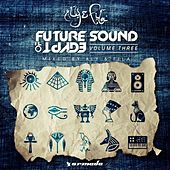 Future Sound Of Egypt, Vol. 3 (Mixed by Aly & Fila) by Various Artists