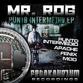 Punto Intermedio - Single by Mr.Rog