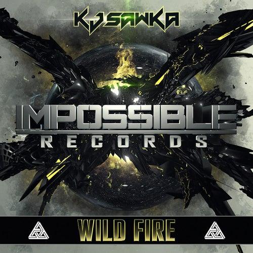 Wild Fire by KJ Sawka