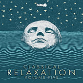 Classical Relaxation, Vol. 5 by Various Artists