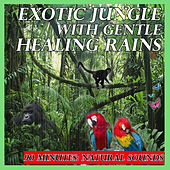 Exotic Jungle with Gentle Healing Rains: 90 Minutes: Natural Sounds by Natural Sounds