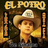 Serie De Exitos Linda Joven Y Agustin Felix by El Potro De Sinaloa