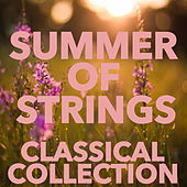 Summer of Strings Classical Collection by Orchestra of the Sun