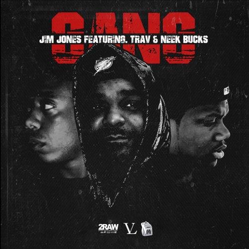 Gang (feat. Trav & Neek Bucks) - Single by Jim Jones