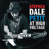Stephen Dale Petit At High Voltage by Stephen Dale Petit