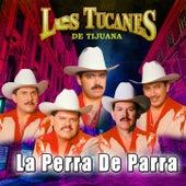 La Perra De Parra by Los Tucanes de Tijuana