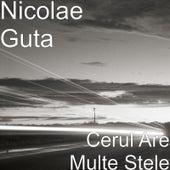 Cerul Are Multe Stele by Nicolae Guta