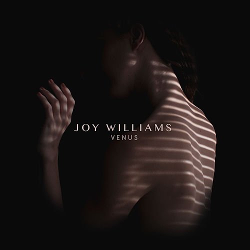 What a Good Woman Does by Joy Williams