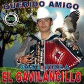 20 Exitos Del Querido Amigo by Saul Viera el Gavilancillo