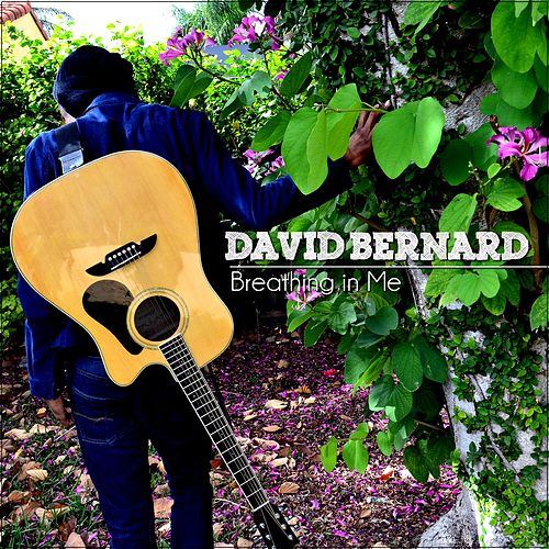 Breathing in Me by David Bernard