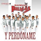 Y Perdóname by Banda Pelillos