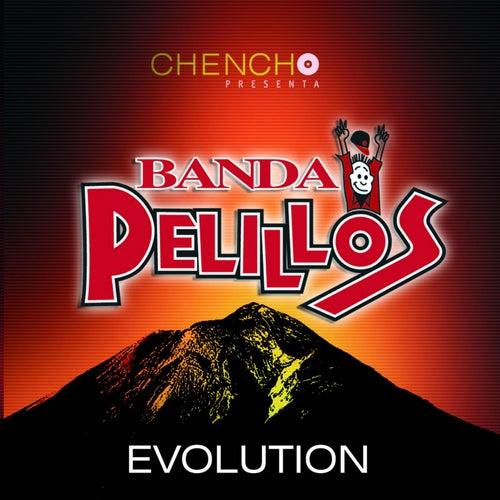 Evolution by Banda Pelillos