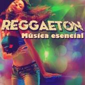 Reggaeton: Música Esencial, Incluye Música de J Alvarez, Los Teke Teke, Falo, Y Muchos Más... by Various Artists