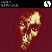 Human Skull by Kraken