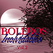 Boleros Inolvidables Vol.2 by Various Artists