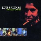 Muchas Cosas by Luis Salinas