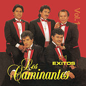 21 Exitos Vol. 1 by Los Caminantes