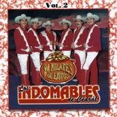 24 Kilates de Exitos, Vol. 2 by Los Indomables De Cedral