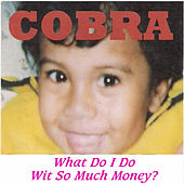 What Do I Do Wit so Much Money ? by Cobra