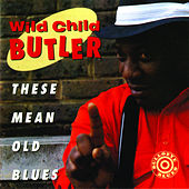 These Mean Old Blues by Wild Child Butler