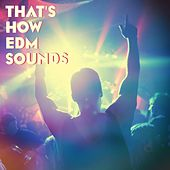 That's How EDM Sounds by Various Artists