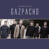 Introducing Gazpacho by Gazpacho