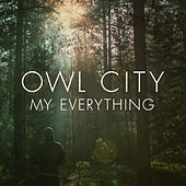 My Everything by Owl City