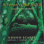 A Forest Called Mulu by Junkie XL