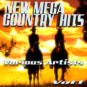 New Mega Country Hits, Vol. 1 by Various Artists