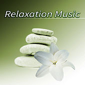 Relaxation Music – The Best Classical Music for Serenity, Meditation Relaxation, Calming Sounds for Peace of Mind by Various Artists