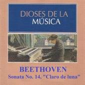 Dioses de la Música - Beethoven - Sonata No. 14 by Various Artists