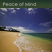 Peace of Mind (Music for Deep Relaxation and Inner Peace) by Dr. Harry Henshaw