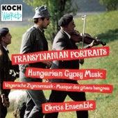 Transylvanian Portraits: Hungarian... by Marta Sebestyen