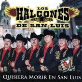Quisiera Morir en San Luis by Los Halcones De San Luis