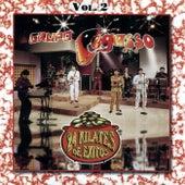 24 Kilates de Exitos, Vol. 2 by Grupo Pegasso
