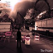 A Taste of the Circus by Priam