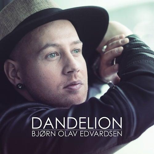 Dandelion by Bjørn Olav Edvardsen