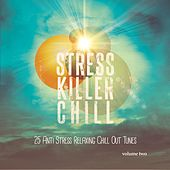 Stress Killer Chill, Vol. 2 (25 Anti Stress Relaxing Chill out Tunes) by Various Artists