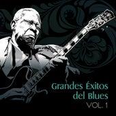 Grandes Éxitos del Blues, Vol. 1 by Various Artists