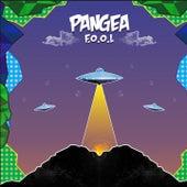 F.O.O.L by Pangea