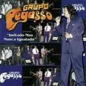 20 Aniversario... Fiesta Mix by Grupo Pegasso