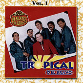 24 Kilates de Exitos, Vol. 1 von Tropical Del Bravo