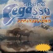 17mo Aniversario by Grupo Pegasso
