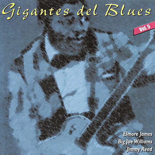 Gigantes del Blues Vol. 5 by Big Joe Williams