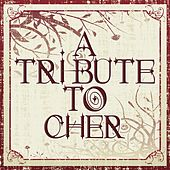 A Tribute To Cher by Various Artists