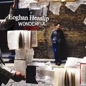 Wonderful Story by Eoghan Heaslip