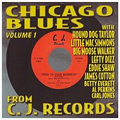 Chicago Blues Volume 1 by Various Artists