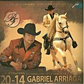 El Caballero de la Ranchera by Gabriel Arriaga