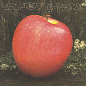 Black Grass by Little Wings